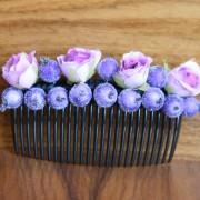 гребешок фиолетовый